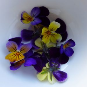 Edible viola flowers