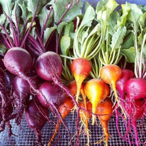 A beet rainbow ready for the Saturday market.