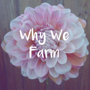 why we farm